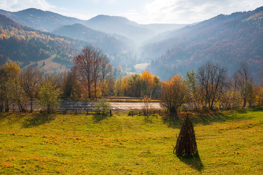 autumnal landscape in mountains. beautiful foggy morning. forests in fall foliage. bright sunny weather