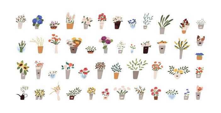 Set of flowers, bouquets, foliage and blooming floral plants in pots, vases and jugs. Floristic interior decor collection. Colored flat graphic vector illustration isolated on white background