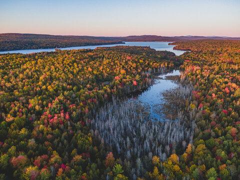 Fall Foliage Sunrise In Maine