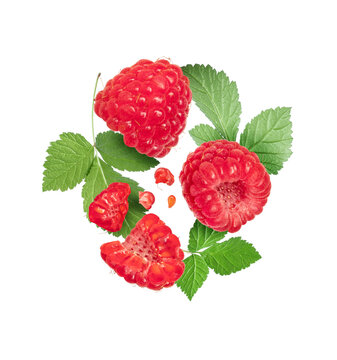 Ripe raspberries with leaves close up isolated on white background