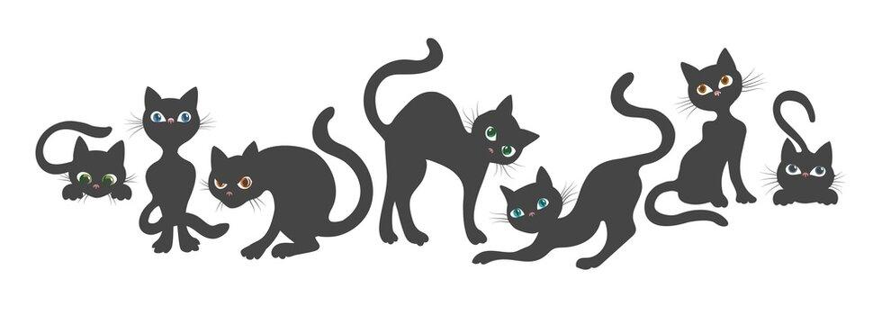 Curious cat poses