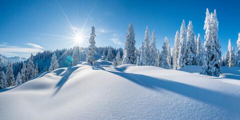Obraz Winterpanorama - Verschneite Winterlandschaft - fototapety do salonu