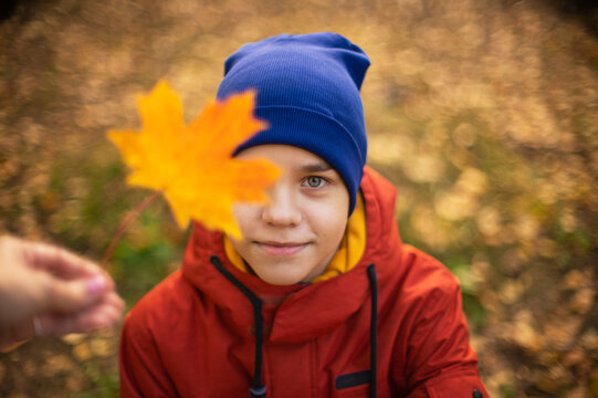 Autumn portrait of boy teen with maple leaves on fall nature background. Shallow depth of field