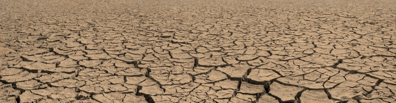 Panorama of cracked brown soil, barren wasteland surface natural background with deep focus