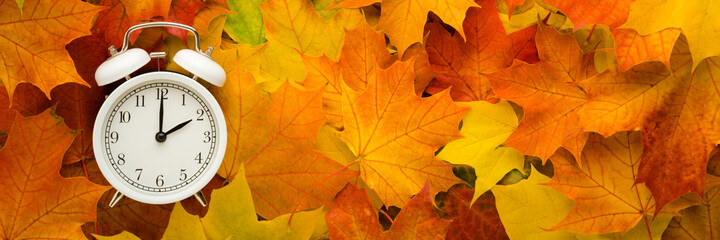Fototapeta White alarm clock on colorful maple leaves background. Closeup. Time change concept. Wide banner. Empty place for text. Top down view. obraz
