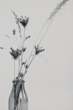 Vase with dry flowers on the table. Minimalist style black and white photography. Simplicity and Elegance concept.
