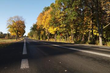 Obraz Droga krajowa jesienią, kolorowe drzewa. - fototapety do salonu