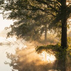 Fototapeta złoty wschód słońca,  przy brzegu rzeki obraz