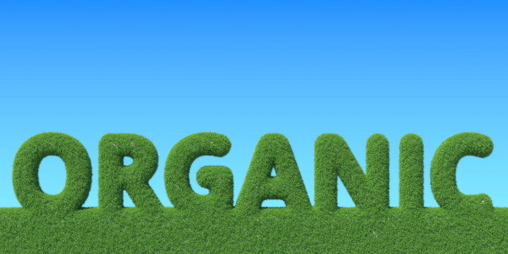 ORGANIC word made with green grass. Conceptual 3D rendering