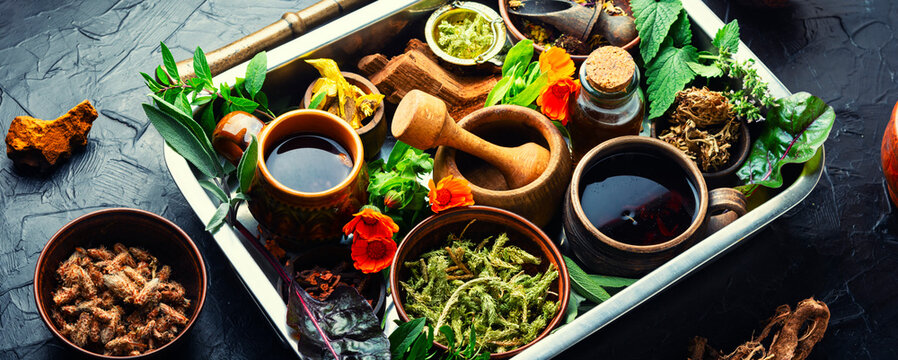 Various kinds of medicinal plants