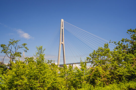 Cable-stayed bridge to Russian Island. Vladivostok. Russia. Vladivostok is the largest port on Russia's Pacific coast and the center of APEC Forum