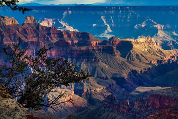 Fototapeta North Rim, Grand Canyon obraz