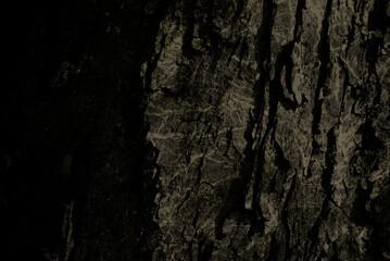 Fototapeta Tło, , pęknięcia, drewno obraz