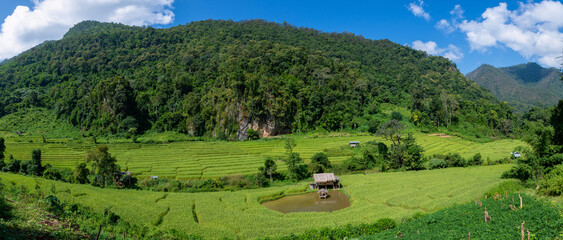 View of terraced rice fields, mountains and blue sky with clouds of Mae Hong Son province Thailand, Panorama.
