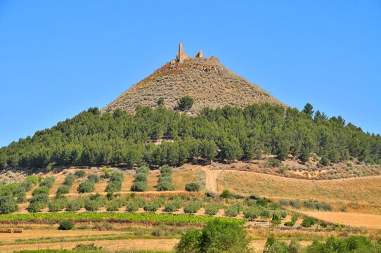 Castello della Marmilla o di Las Plassas in Sardinia
