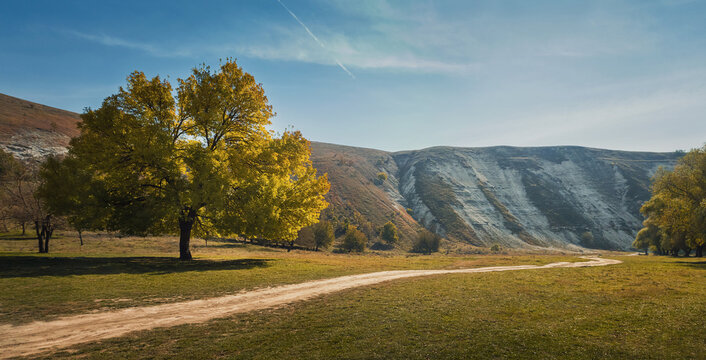 Idyllic countryside scene with a beautiful tree near a footpath and karst limestone hills on the background. Autumn season nature landscape at old Orhei complex, near Trebujeni village, Moldova