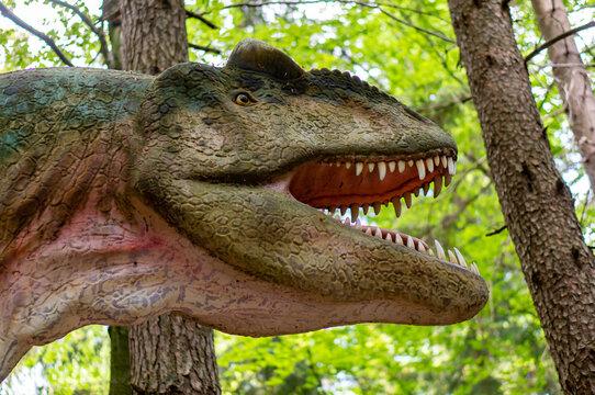 SZKLARSKA POREBA, POLAND - May 10, 2018: Head of a model Allosaurus with open mouth showing sharp teeth at the Dino Park