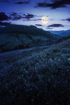 countryside valley scenery at night. beautiful carpathian nature landscape with grassy hills, fields and meadows between forested hills in full moon light. small village in the distance
