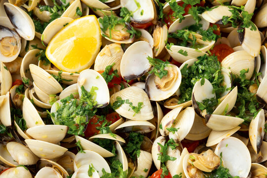 White shell clams with garlic, tomatoes and parsley white wine sauce in the fry pan