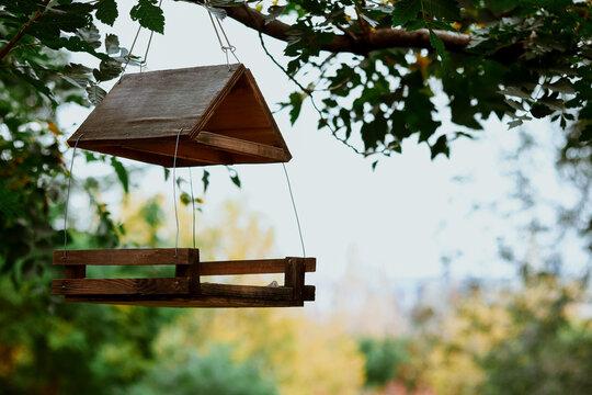 Birdhouse. Autumn photo of a birdhouse in the park.