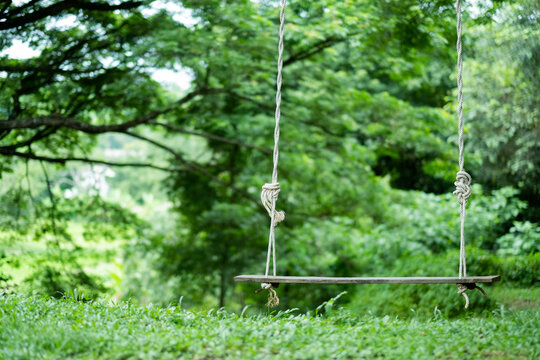 closeup swing with nature background.travel. relax time. travel on holidays