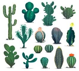 Obraz Mexican desert cactuses. Cartoon prickly succulent plants. Mexico desert flora, exotic cacti or flowering barrel, senita and saguaro cactuses. Western game environment succulent plants vector asset - fototapety do salonu