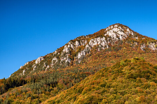 Colorful trees in autumn forest. Top of the hill Sip, Slovakia