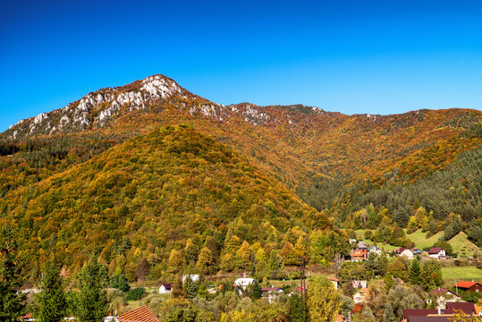Colorful trees in autumn forest. Hill Sip over village Rojkov - Stankovany, Slovakia