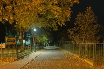Ustronna, peryferyjna uliczka w nocy.
