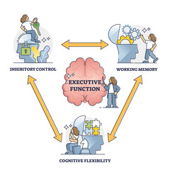 Obraz Executive function or cognitive control, vector illustration outline diagram. Brain thought process model of the working memory, cognitive flexibility and inhibitory control. Neuroscience research. - fototapety do salonu
