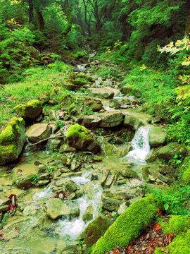 water stream waterfall in autumn kypseli village, arta perfecture greece