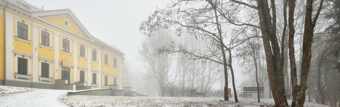 An old restored yellow manor on the forest hill. Dark tree silhouettes, fog, blizzard. Atmospheric winter landscape. Loneliness, silence, ghost, mystery concepts. Architecture, building, history, past