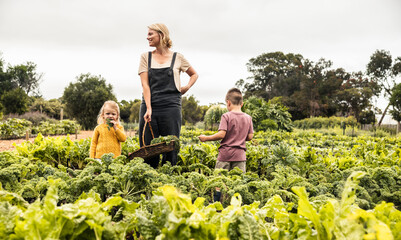 Obraz Young mother standing in a vegetable garden with her children - fototapety do salonu