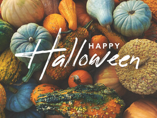 Obraz Happy Halloween Holiday Greeting Card Handwritten Calligraphy Text Design with Fall Pumpkins, Squash and Gourds Colorful Background - fototapety do salonu