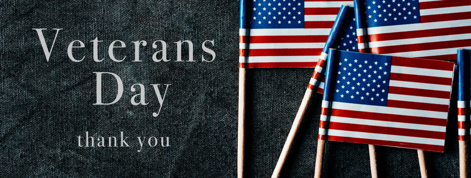 text Veterans Day and US flags, web banner