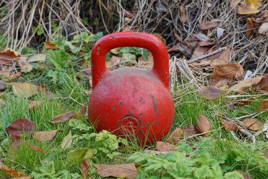 one big old red iron sports kettlebell stands in green grass and brown fallen leaves on an autumn street in nature