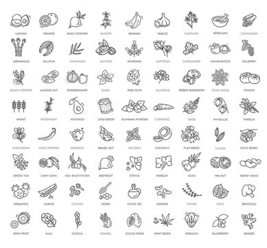 Superfoods line vector icons. Vector Organic superfoods
