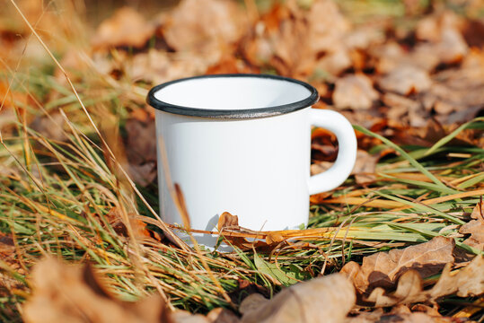 White iron mug mock-up standing on green grass with fallen leaves in forest outdoors. Close-up of empty enamel cup for logo or branding