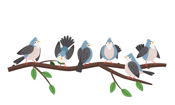 Spring branches birds. Blue bird set chirping and wings flapping on tree branch isolated on white, artistic titmouses on forest twig vector illustration
